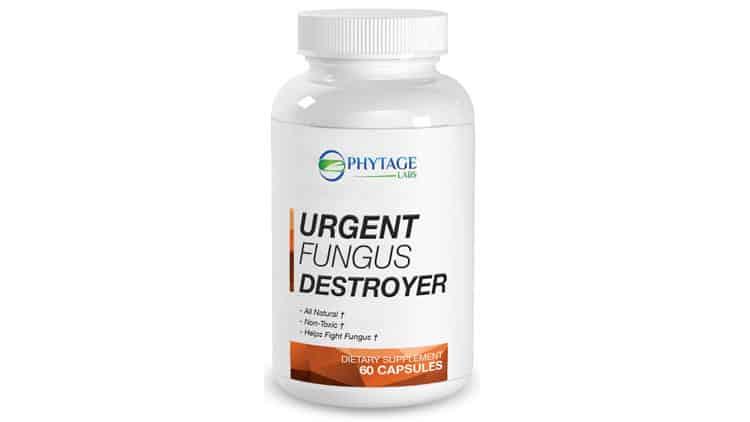 Urgent-Fungus-Destroyer