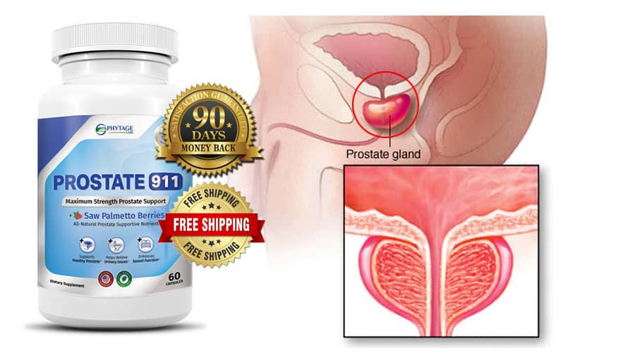 Prostate 911 Review