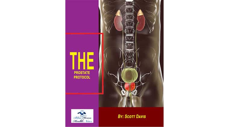 The-Prostate-Protocol