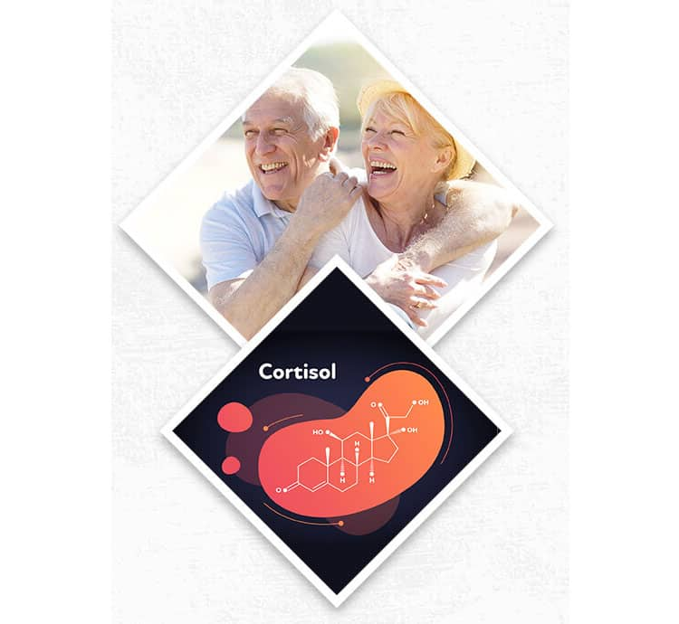 Cortisol-is-what-gives-your-muscles-that-burst-of-energy-when-you-are-afraid-and-have-a-bad-scare