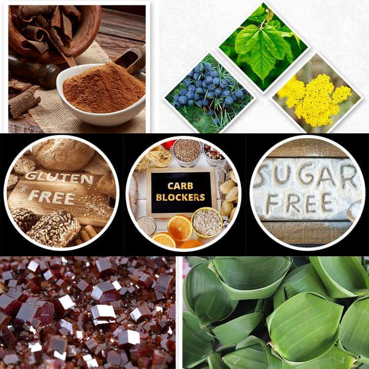 Gluco-20-Ingredients