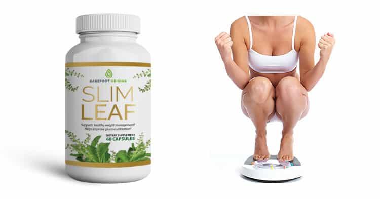 Slim Leaf Review